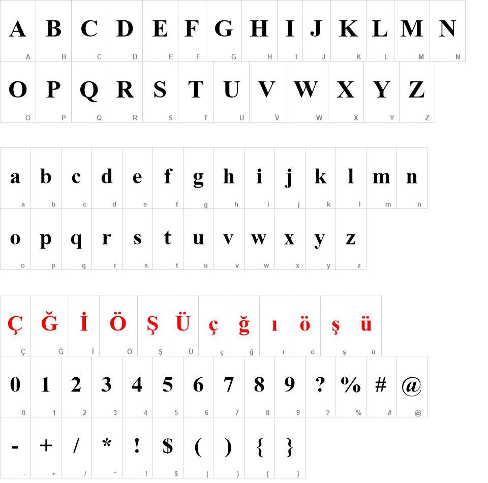 Turkish Times New Roman Font
