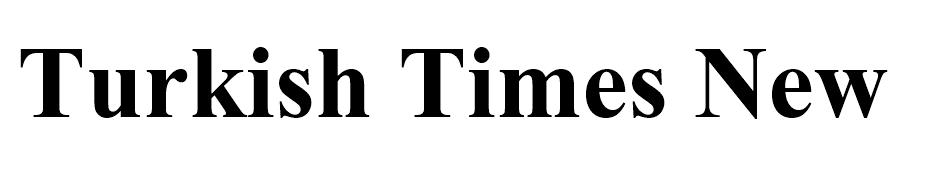 Turkish Times New Roman font