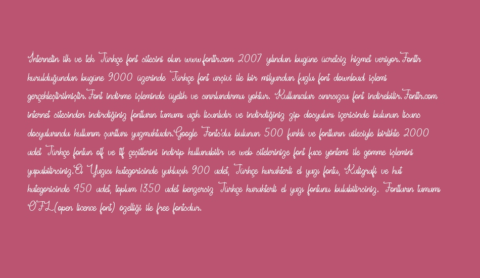 ready-for-ıt-demo font 1